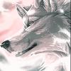 Smaug Wolf